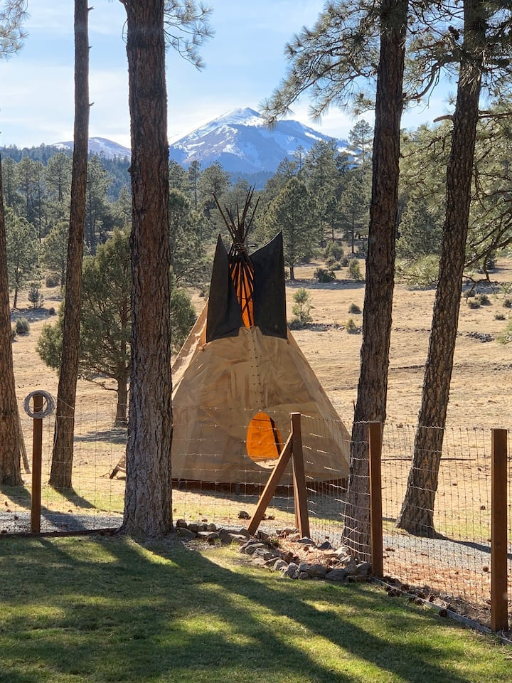 The Sprouted Grain Rustic Mountain Tipi