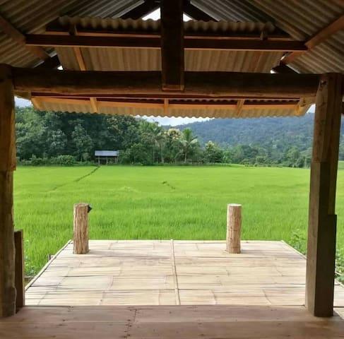 ชิโนปูฮัท Chinopuu Hut Home Stay Muangkong