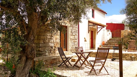 Traditional Alentejo house recently renovated