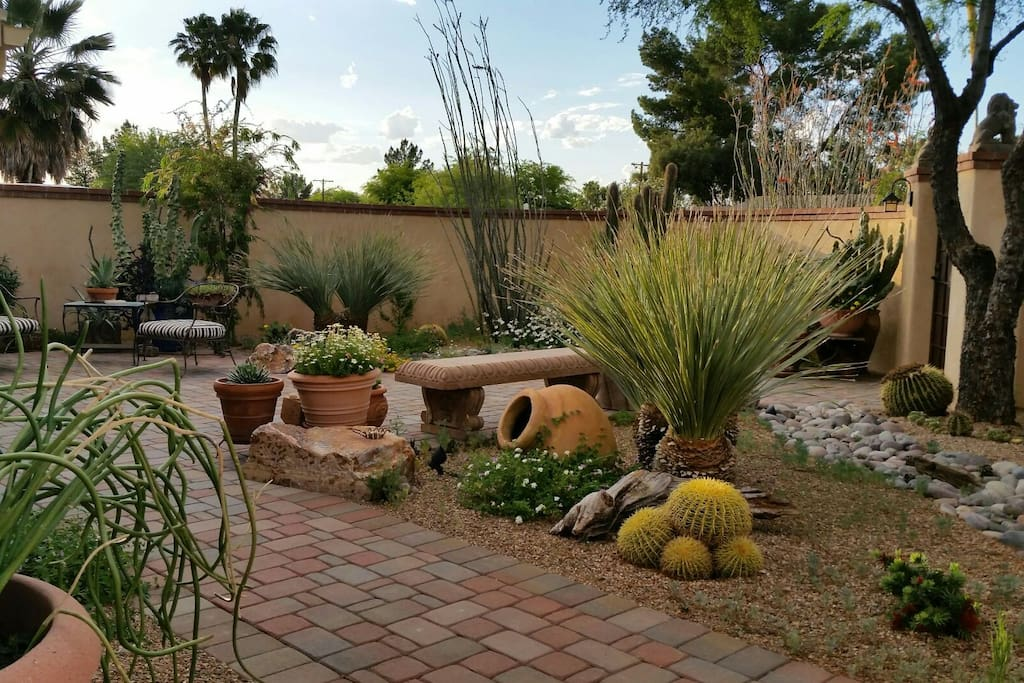 A great sampling of the Sonoran desert's beauty!