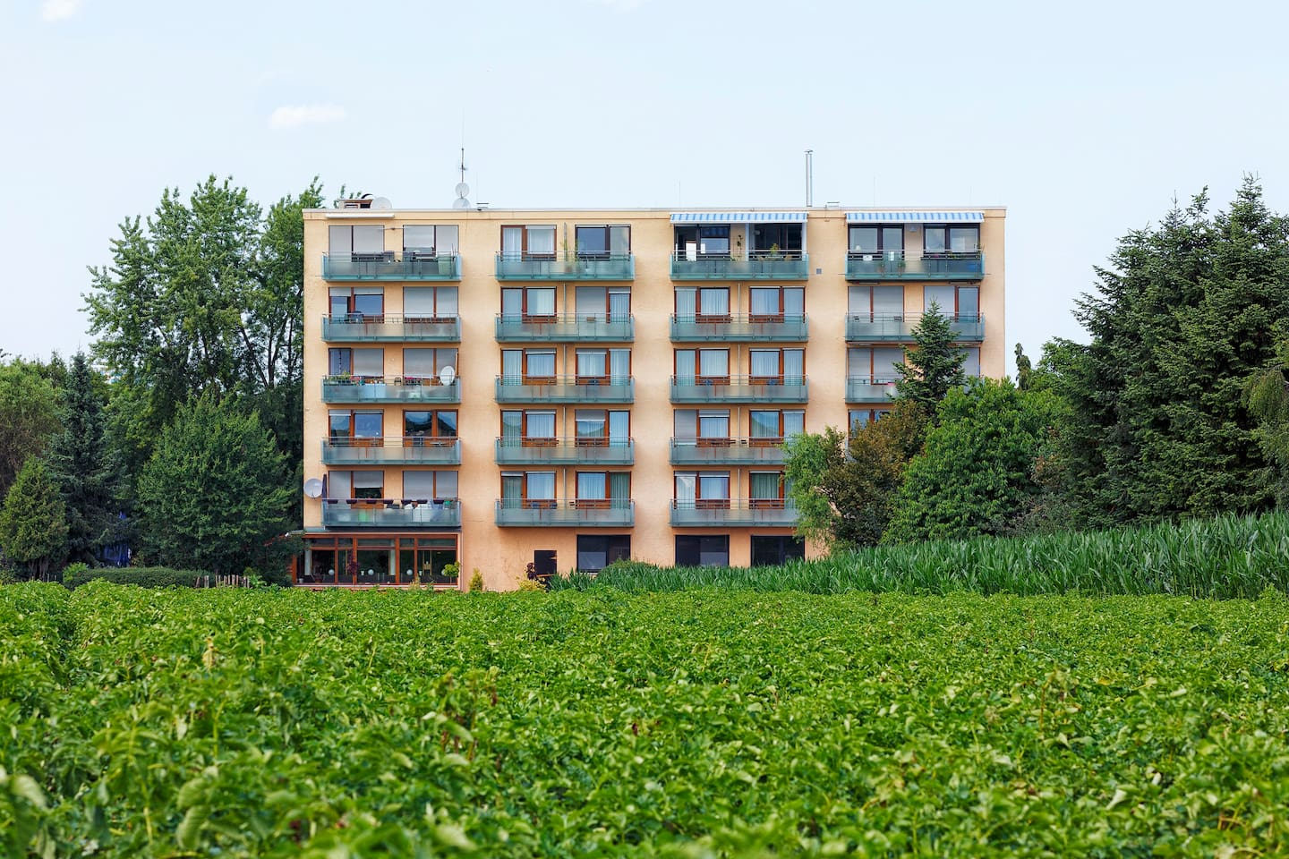 Unsere Apartments
