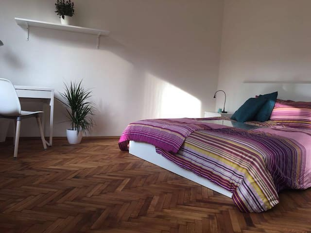 Amazing 4BDR by the Old Town Square - Prague - Apartment