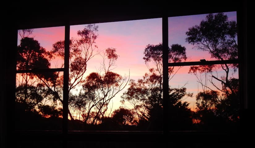 Treetops and sunsets from the lounge.