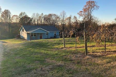 Betty's Vineyard House - Shawnee Hills Wine Trail