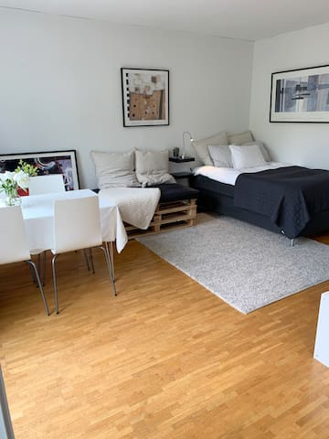 Cozy 1 room apartment with an amazing location!