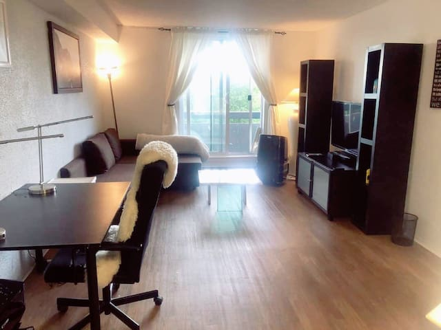Beautiful 1 bedroom apt with a great location
