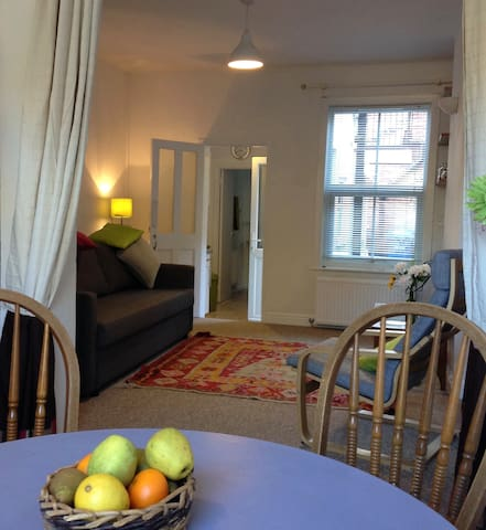 Cygnet: light airy small house central Norwich - Norwich