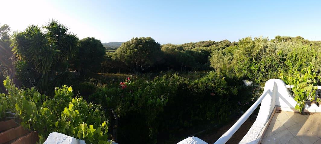 Casa Vacanze con Giardino immersa nel verde - Santa Teresa di gallura - Ház