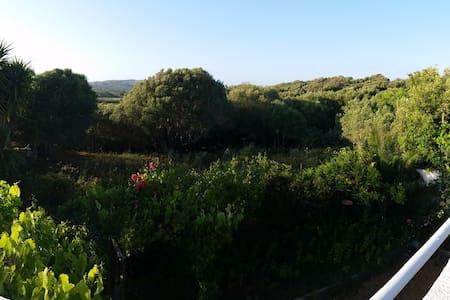Casa vacanze con giardino, immersa nel verde - Santa Teresa di gallura