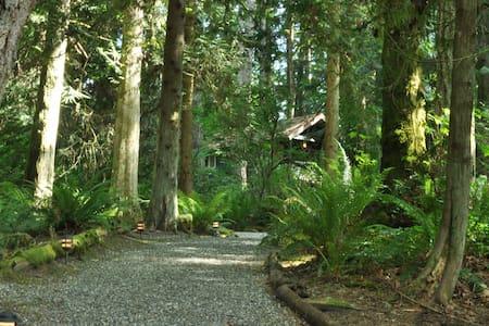 Battlepoint Cabin with Ten Acres of Forest. - Bainbridge Island
