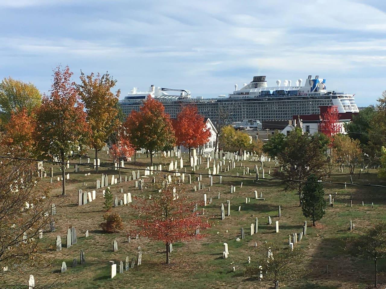 Cruise Ship Season!