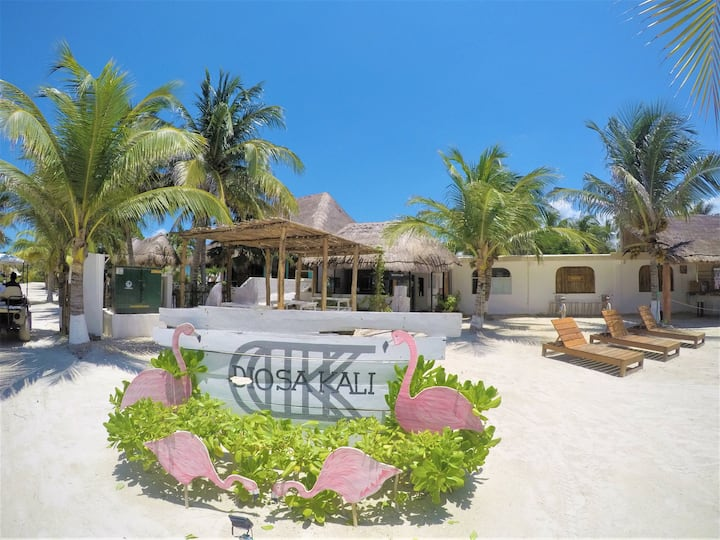 Friends Ocean Front Room at the heart of Holbox