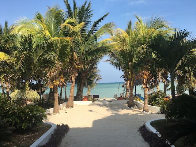 Beach Villa-Costa Maya -Mahahual-highly rated
