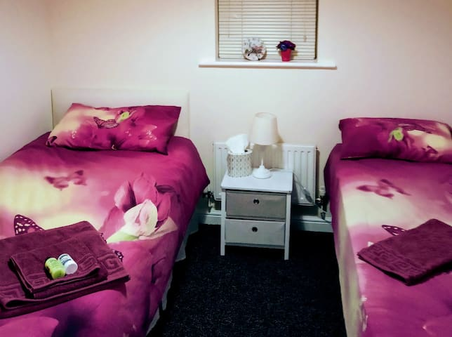 Cosy Comfy Modern Twin Room for Female Occupancy 1