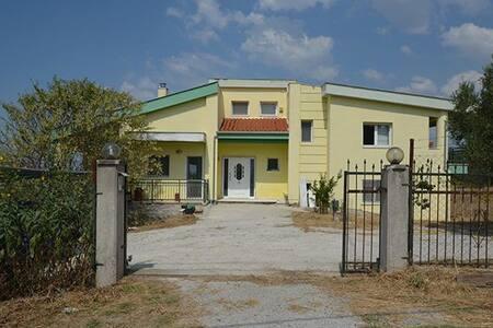 Among olive trees - Plagiari - Вилла