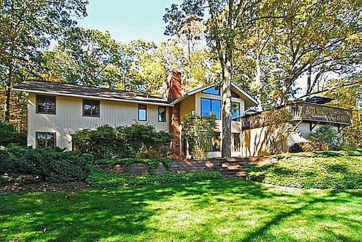 Lovely, stylish house on a lake. - Sparta Township - House