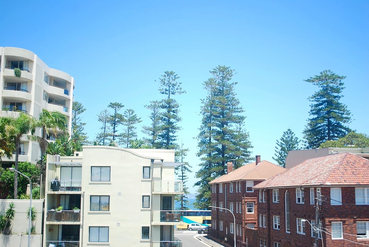 100m to Manly Wharf & Ferries