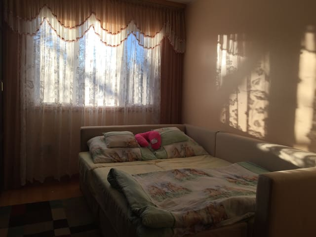 Sunny room in Whitby ON Canada - วิทบี - บ้าน