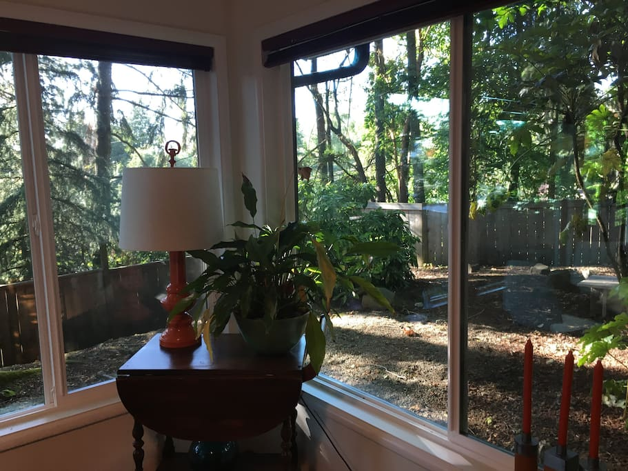 view from the dining room table