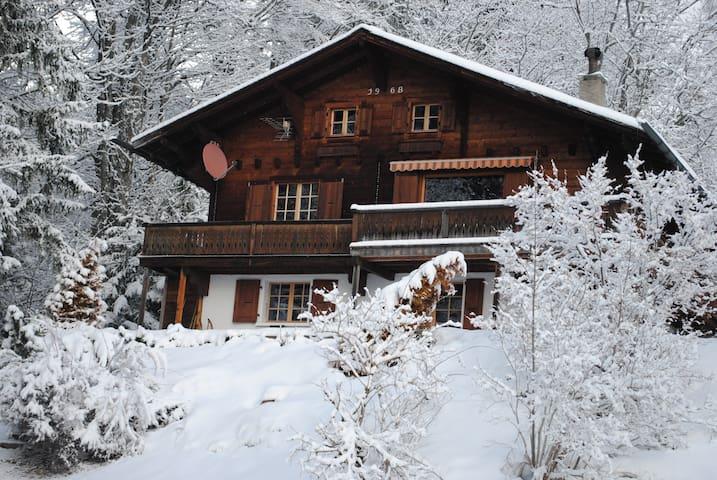 Ski chalet in Barboleuse - Gryon - กระท่อมบนภูเขา