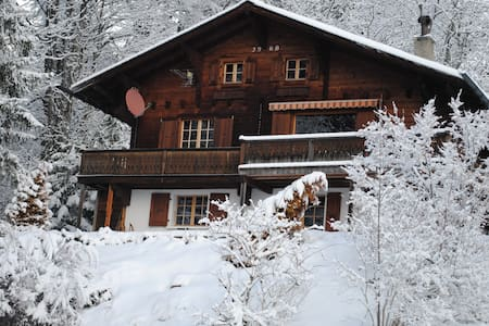 Ski chalet in Barboleuse - Gryon - Hytte (i sveitsisk stil)