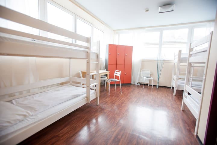 Bed in a shared 6-BED DORM with private bathroom