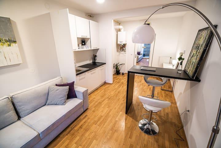 Idyllic studio for 2 in Vič