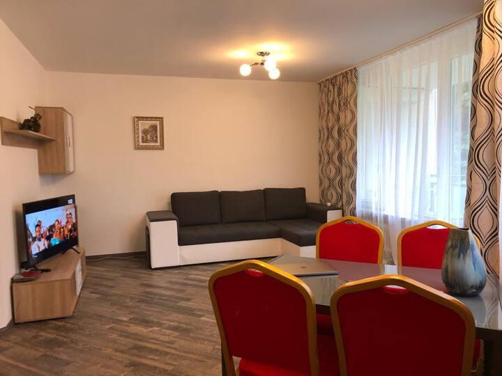 Gemütliches 2-Zi-Wohnung  für 1-4 Personen