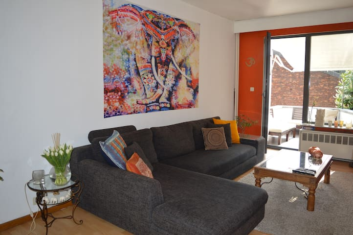 bright & spacious house near lovely parks - Antwerpen - House