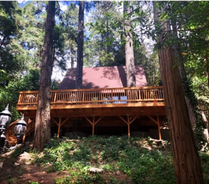 Cozy Treetop Cabin