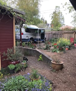 RV Camping Van in urban campground