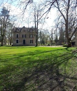 LA GRAVINE - Montigny-sur-Loing - Σπίτι