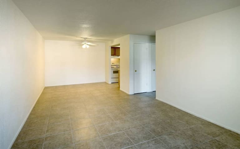 Spacious Private Apartment Closed to USF