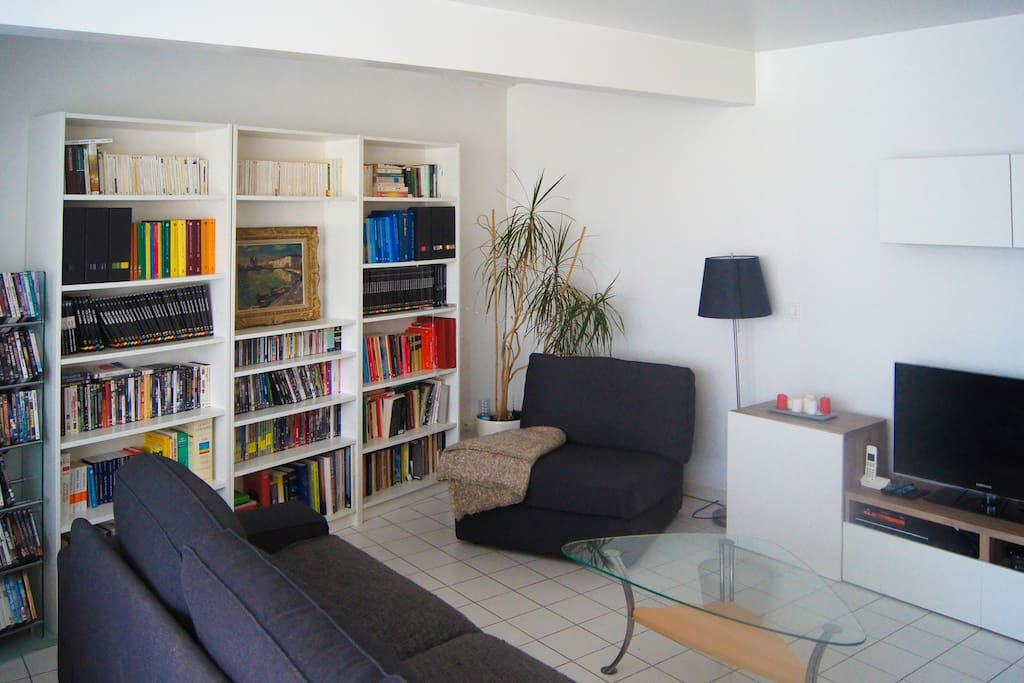 Living room view with the library and a rich dvd collection