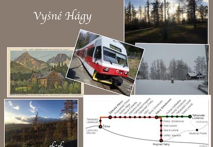Apartmán L+L ( č.2 s loggiou) - Vysoké Tatry