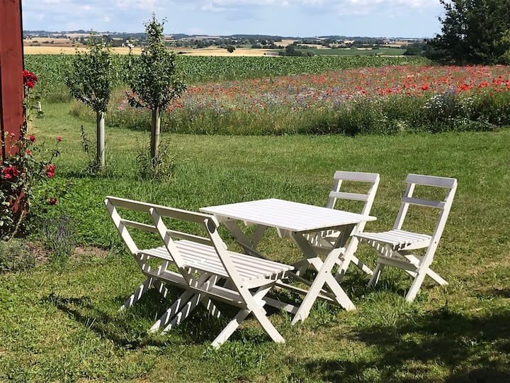 Peaceful living in southern Skåne at Solberga BnB