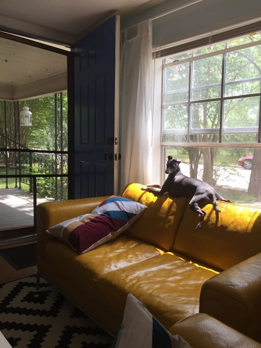 dining and living room with queen easy plug in blow up mattress and home entertainment / pup not included :)