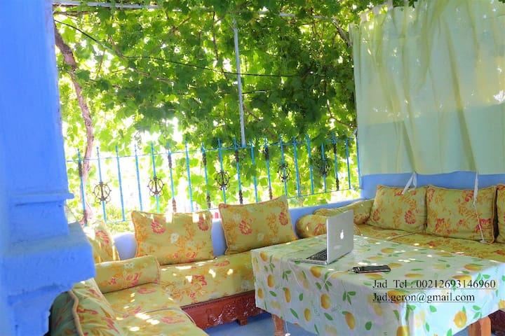 Grapes terrace (Dar Dalya)