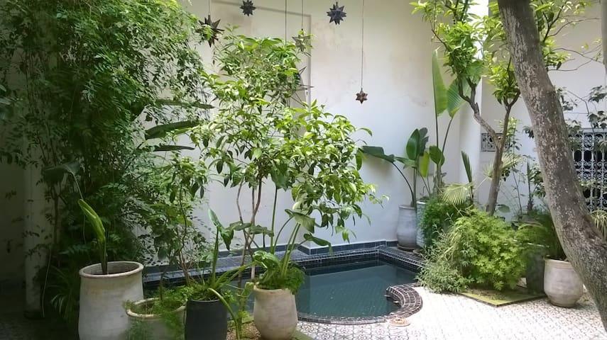 """Bab EL ILL  chambre  """" Dans l'arbre """""""