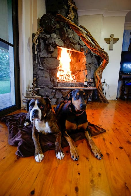 Dog friendly inside too - including in front of the open fire.  Sea Horse Diamond Beach