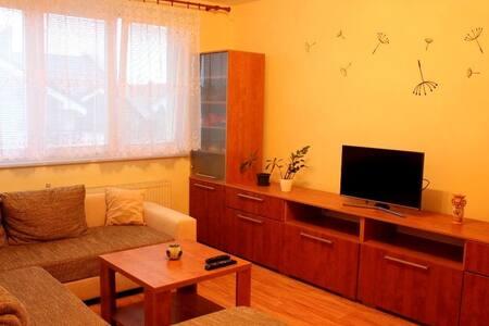 Cozy flat in Trnava