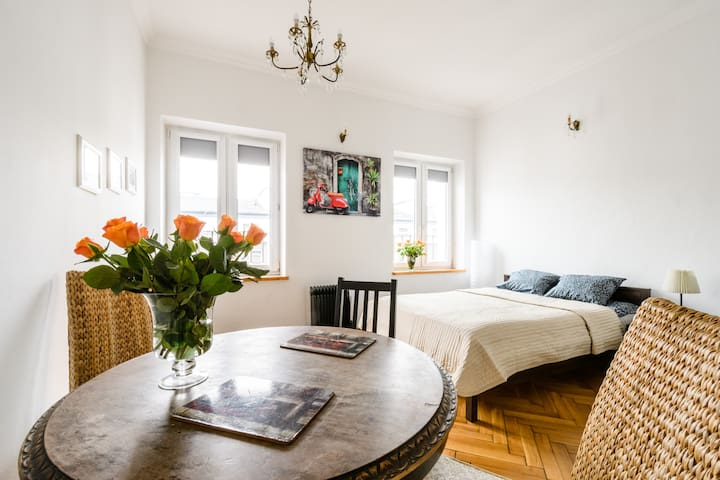 Spacious flat in city center - Warszawa - Pis