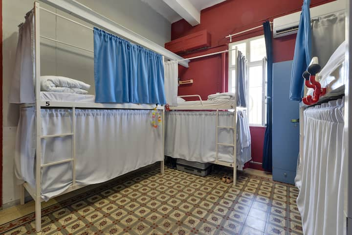 Roger's House - Bed in a 6 beds mixed dorm