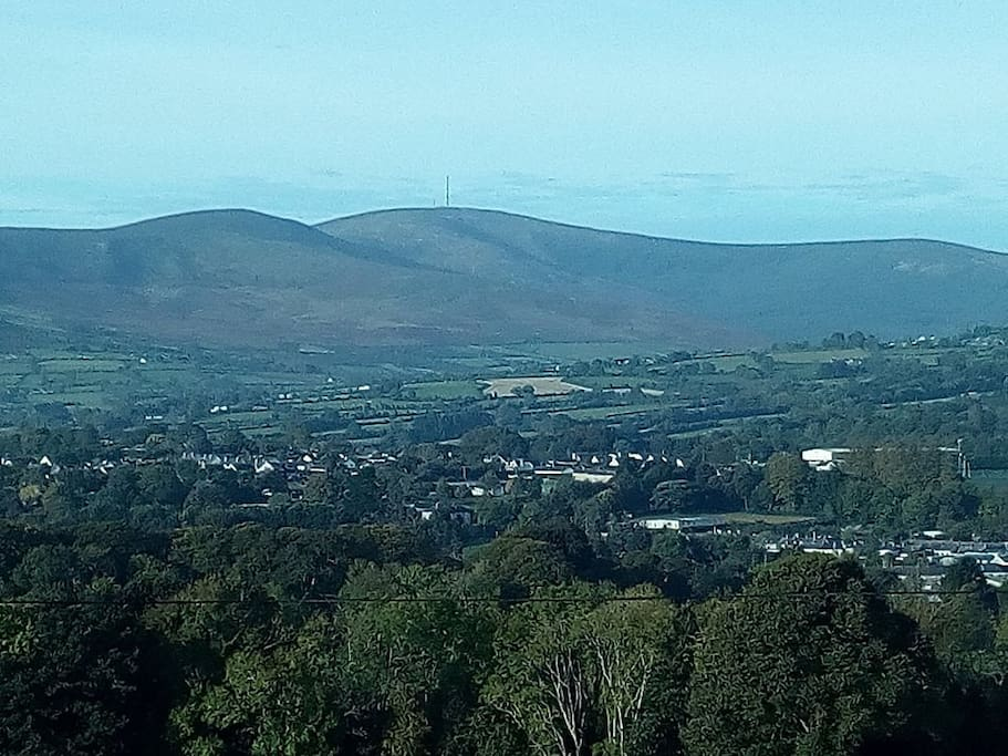 Mount Leinster view from house