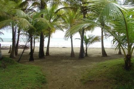 Beach front apt