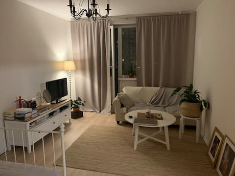Scandinavian style flat
