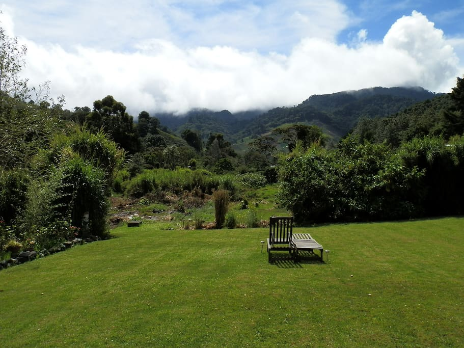 Come and relax at the sound of the Chiriqui vejo river.