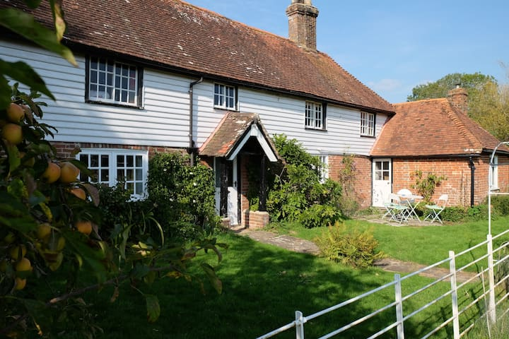 Beautiful airy Sussex country house - Bines Green - House