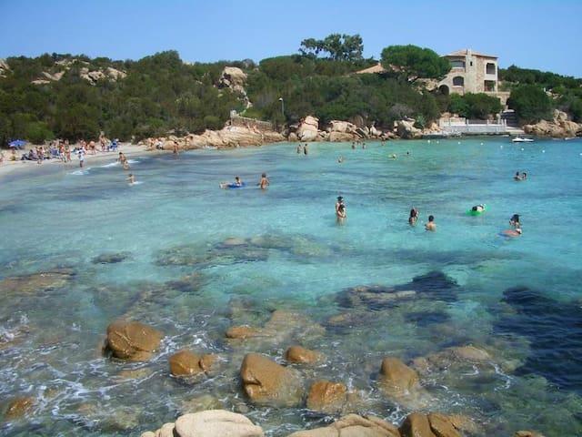 Il mare cristallino di Porto Cervo - Golfo Pevero - 公寓