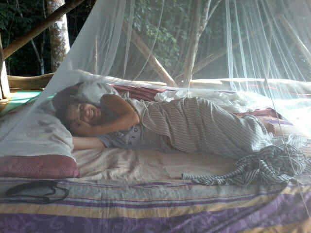 Bukit Lawang ECO nature lovely lodge & treking